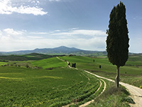 Pienza, hiking along the <em>Gladiator road